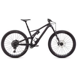 Specialized 2020 Stumpjumper Carbon Evo Pro 29er Full Suspension Mountain Bike