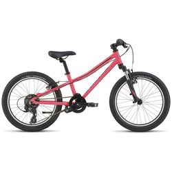 Specialized 2021 Hotrock 20 Inch 7 Speed Kids Bike