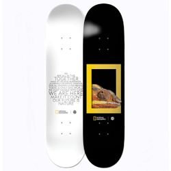 Element National Geographic Dragon 8.2 Inch Skateboard Deck