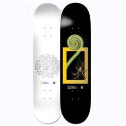 Element National Geographic Spider 8.0 Inch Skateboard Deck
