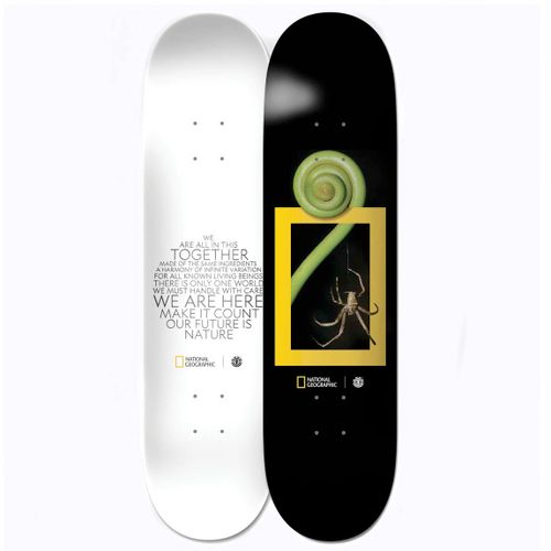 Element National Geographic Spider 8.0 Inch Skateboard Deck