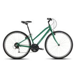 Raleigh 2020 Detour 3 Step Thru Comfort Bike