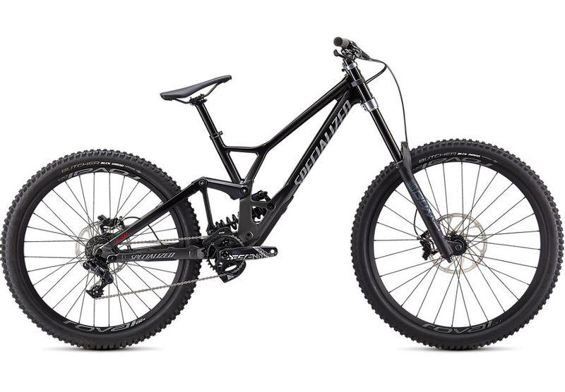 Specialized 2021 Endoru Downhill Bike